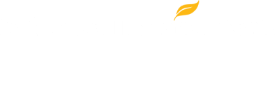 Global Education Movement (GEM) at SNHU